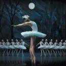 St Petersburg Ballet Theatre - Swan Lake